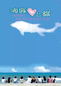 海豚爱上猫剧照