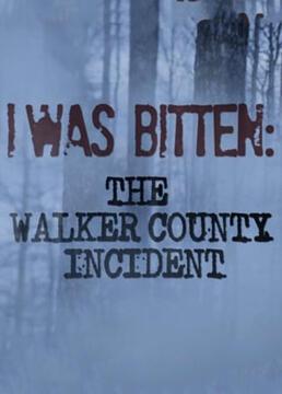 沃克郡神秘攻击事件剧照