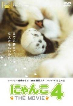 猫咪物语4剧照