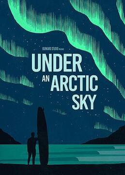 北极的天空下剧照