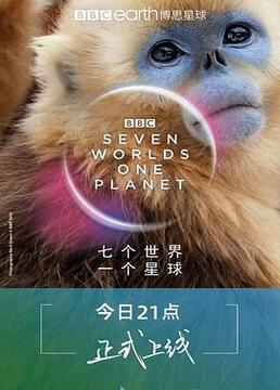 七个世界一个星球剧照