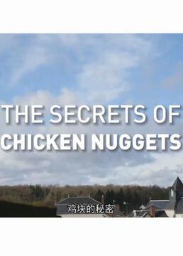 鸡块的秘密剧照