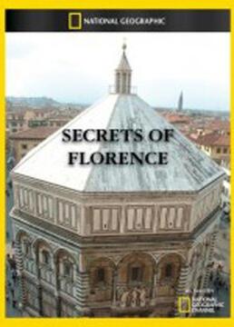 佛罗伦萨的秘密剧照