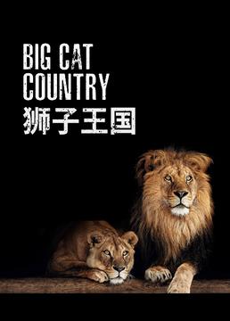 狮子王国剧照