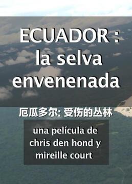 厄瓜多尔受伤的丛林剧照