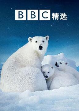 bbc精选剧照