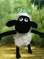 小羊肖恩之冠军羊剧照