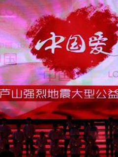 中国爱420芦山地震公益晚会剧照