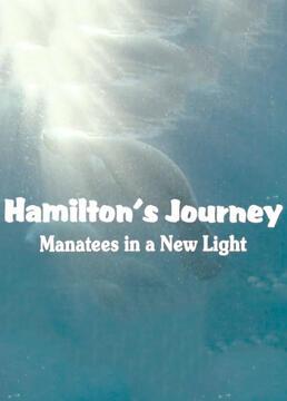 汉密尔顿之旅剧照