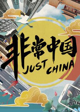 非常中国剧照