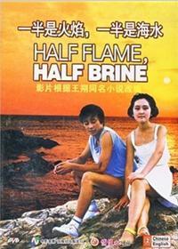 一半是火焰,一半是海水剧照
