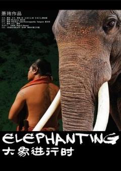 大象进行时剧照
