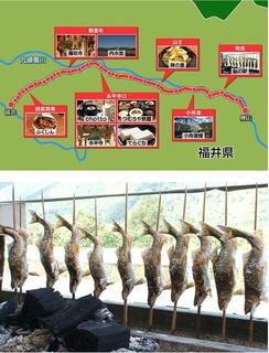 寻访地方线 随意下车之旅 - 福井越前铁道 大平山 永平寺和白山的美景剧照