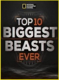 十大巨兽排行榜剧照