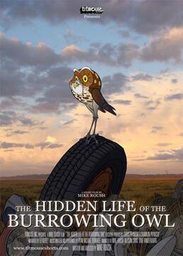猫头鹰的穴居生活剧照