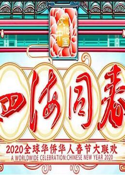 2020湖南卫视全球华侨华人春晚剧照