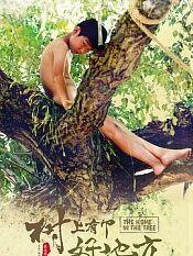 树上有个好地方