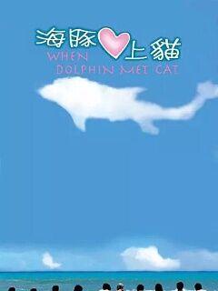 海豚爱上猫